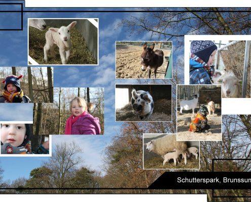 Herfstwandeling met Précom Logopedie - Samen naar het Schutterspark